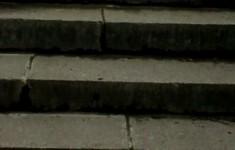 Мосты. Львиный мостик