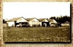 Гатчина. Гатчинский аэродром