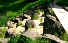 Символы доблести. Царское Село. Морейская колонна
