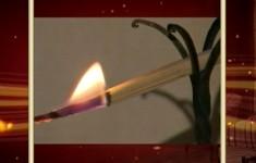 Светильник. История первая
